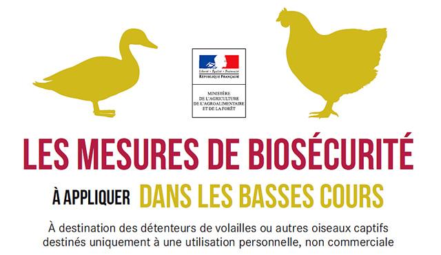 Des mesure de bio-sécurité à appliquer expressément !...|Illustration DR
